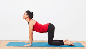 gentle and relaxing yoga workout  alliance work partners