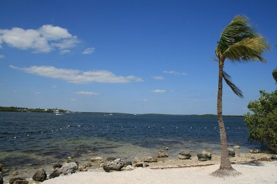 Things To Do In Holmes Beach Fl